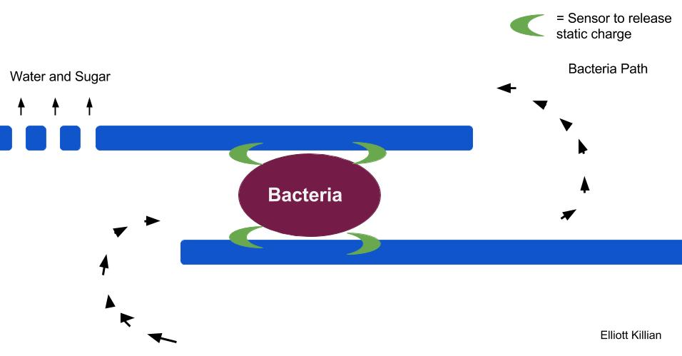 A membrane diagram to kill elm phloem necrosis or bacteria in a tree or suspended liquid. The bacteria flows through and next to two parallel lines, which show the membrane. Sensors are on the lines. When the sensors detect the bacteria electricity is released killing the bacteria. Water and sugar is free to flow through the membrane.